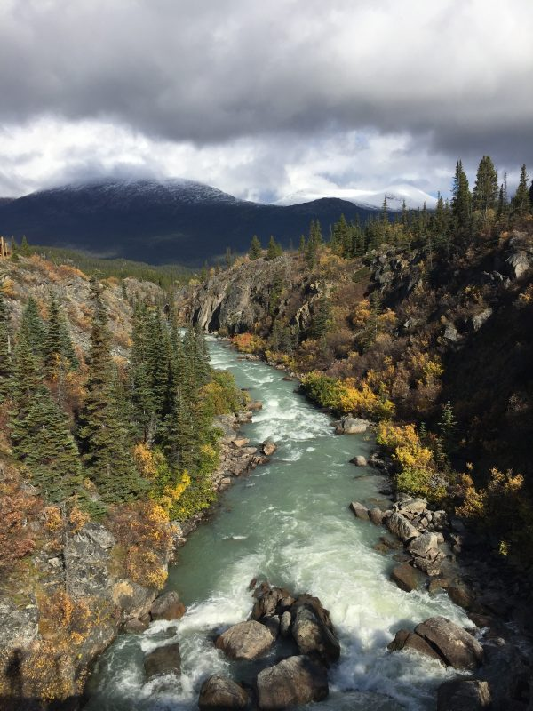river running from the mountains in Yukon