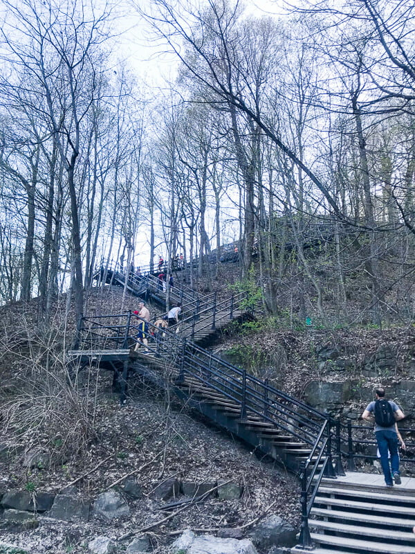 fall in love with Montreal and a trail stairs going up a wooded area